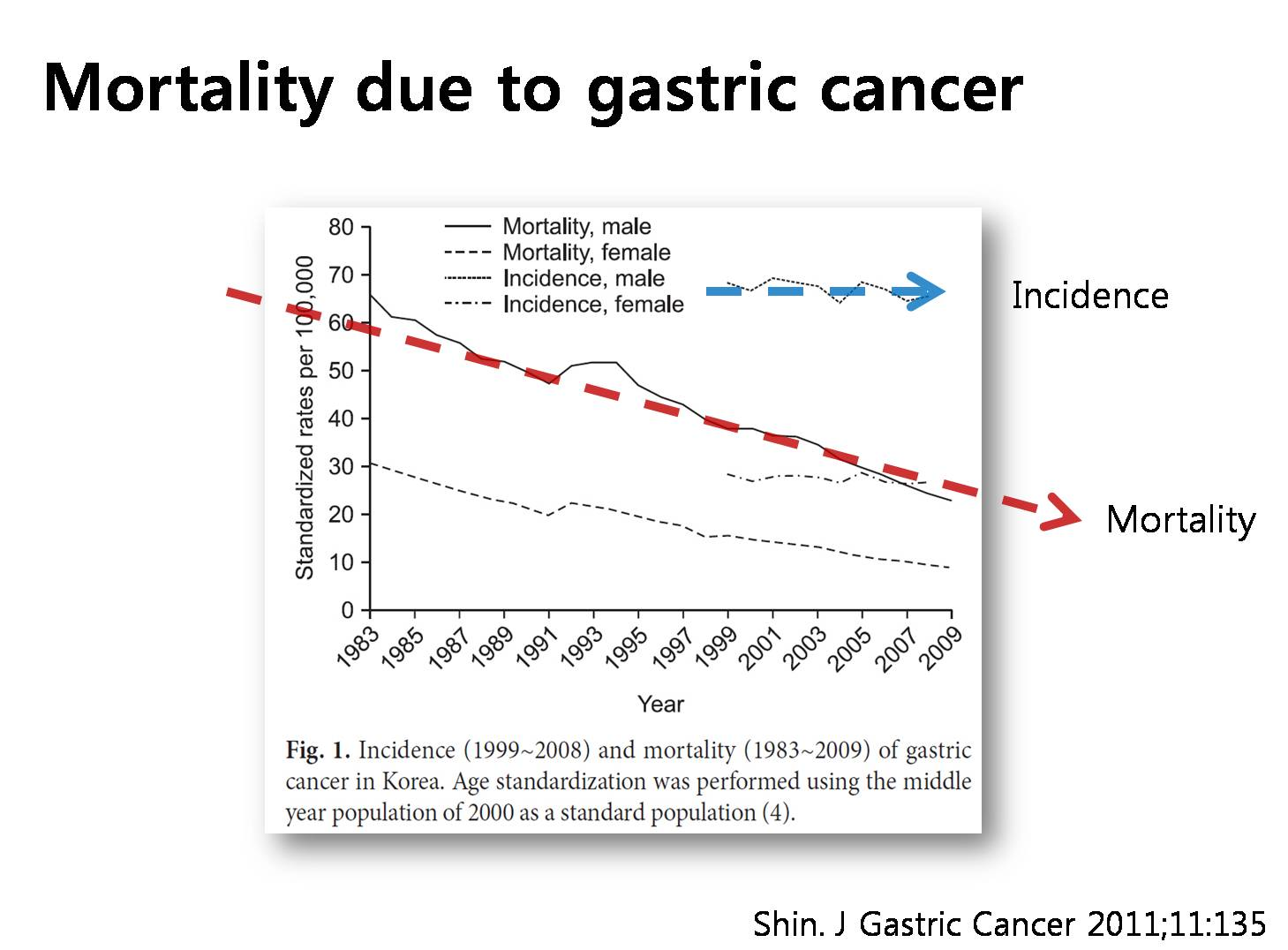 Gastric cancer quality of life